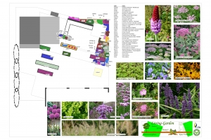 particulieren tuin beplanting